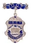 Juvenile Templars Badge 1 sized