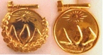 Past Chief pins